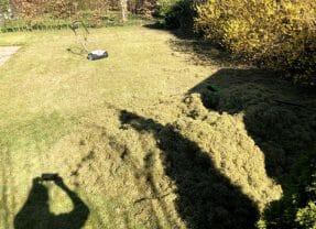 Mosfjerner – fjern mos i græsplæne (2020 guide med billeder)