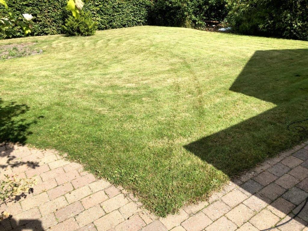 Kortklippet græs inden vertikalskæring